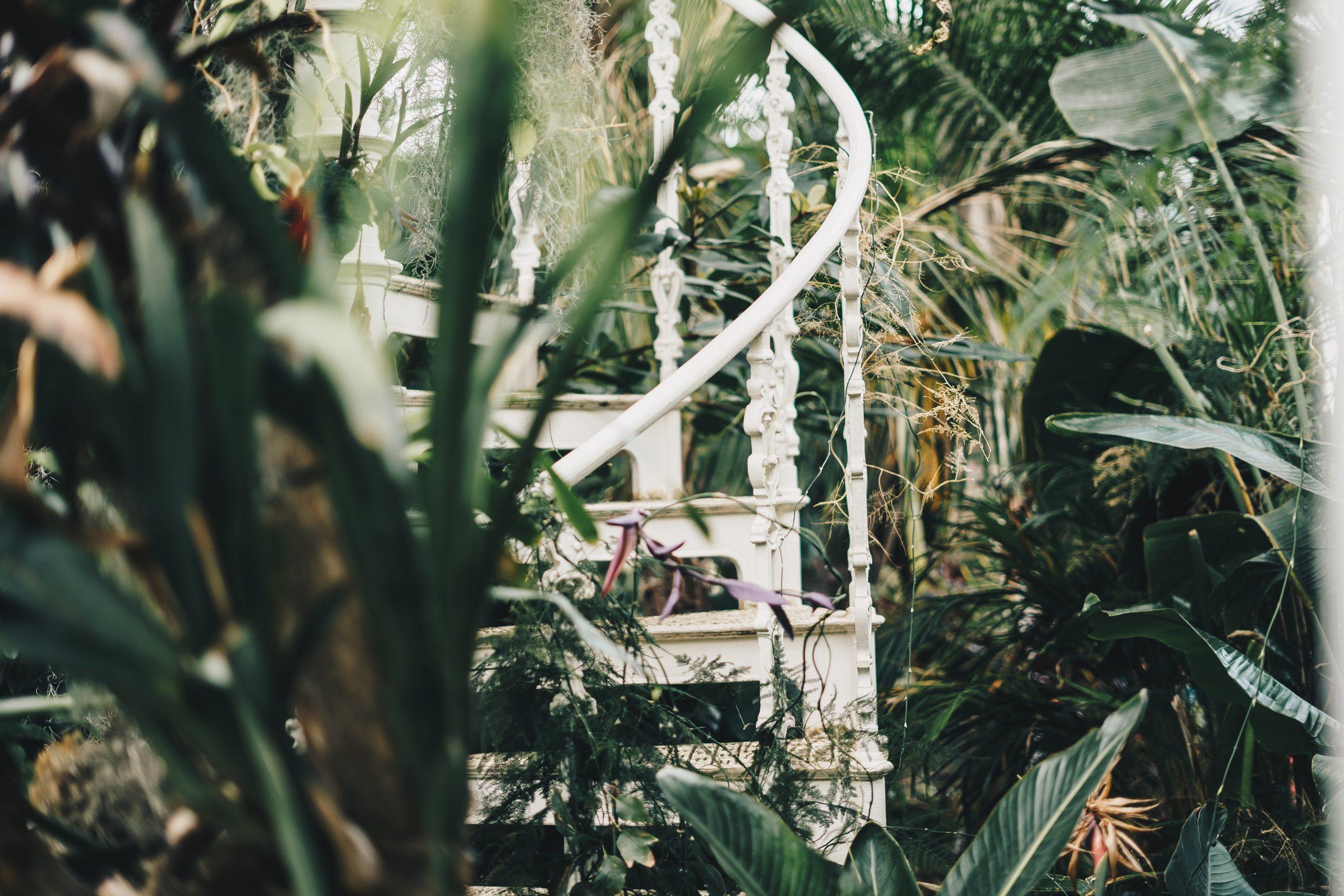 Binnen tuinieren